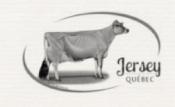 Jersey Quebec