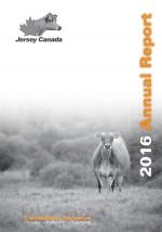 2016 annual report english