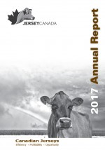 2017 annual report english