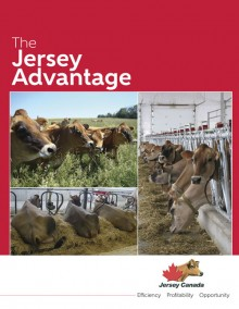 2016-jersey-advantage-eng-cover-small