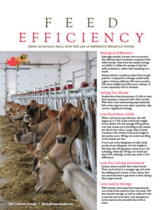 feed-efficiency-final