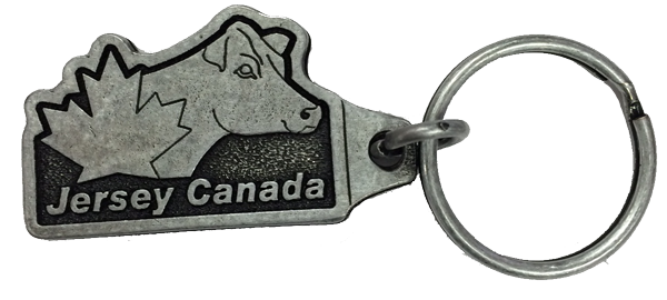 jersey-store-key-chain-cut-out